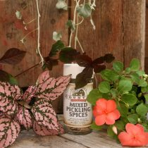 Herbs: Spices & Rubs