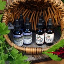 Herbs: Tinctures
