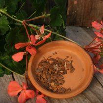Herbs: Medicinal & Bulk
